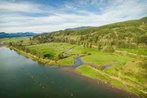 Lower Nehalem Community Trust received funding to acquire the 33-acre Botts Marsh in Tillamook County.