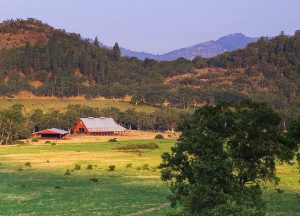 C2 Ranch. Photo Credit: Thomas Kirchen