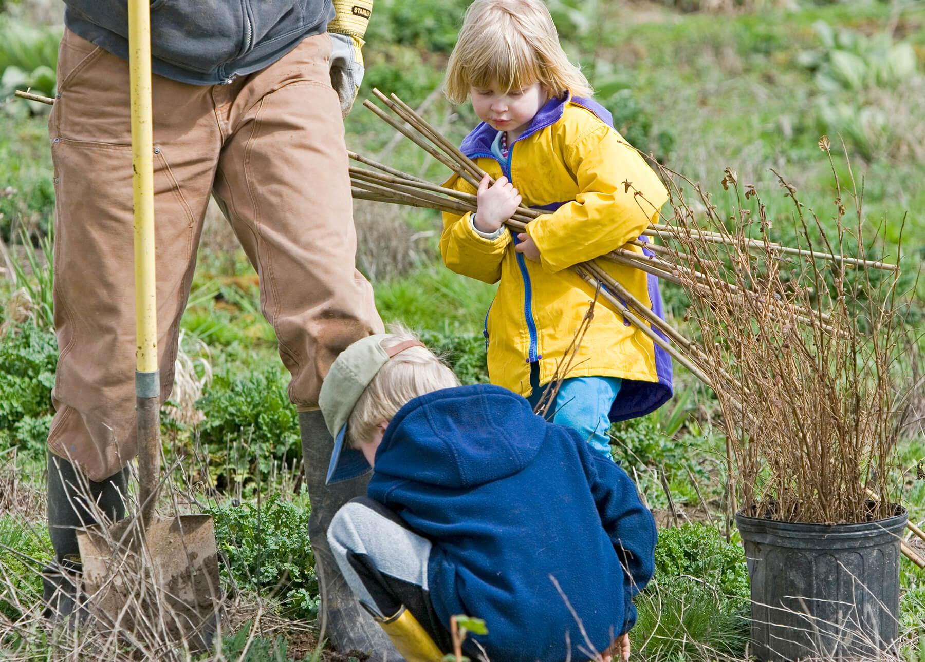 DLT. Volunteer Workday Sandy River Delta.