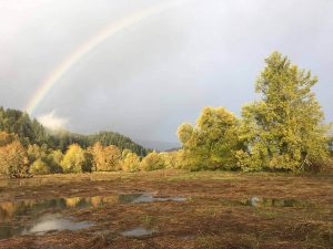 A rainbow sets the scene as the Land Trust and contractors breach levees and reconnect historic floodplain on Kerry Island in the Columbia River estuary, Columbia County, Oregon. Photo courtesy of Columbia Land Trust