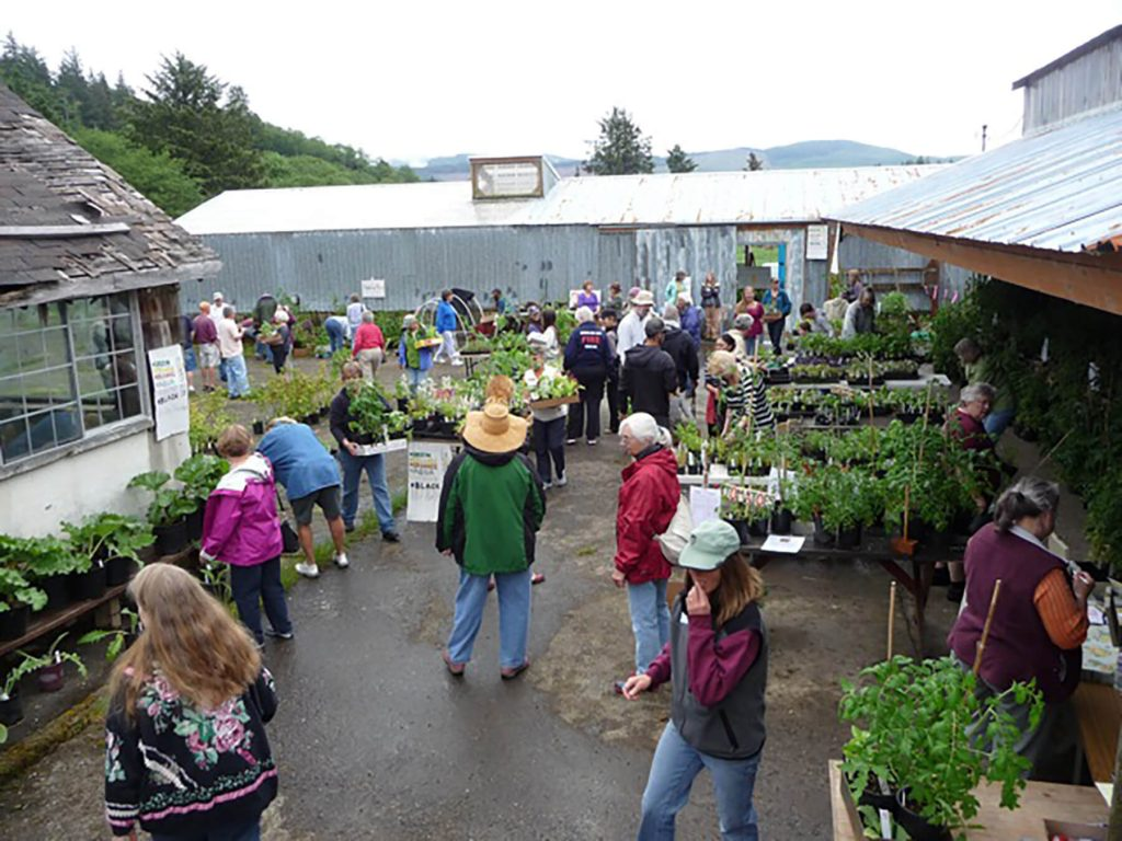 Plant sale. Lower Nehalem Community Trust.