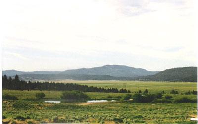 Northwest Rangeland Trust