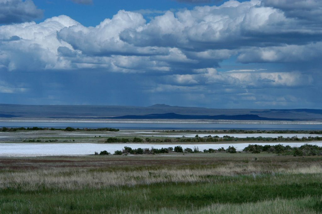 Oregon Desert Land Trust. The Summer Lake and Diablo Rim region is part of the Pacific flyway and critical to migrating waterfowl and shorebirds. Photo: ODLT staff file.