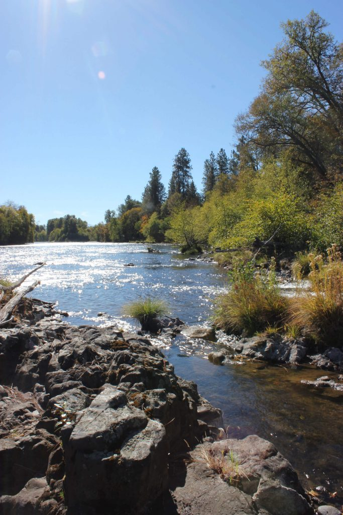 Southern Oregon Land Conservancy. Rogue River at the Rogue River Preserve Photographer: Eugene Weir