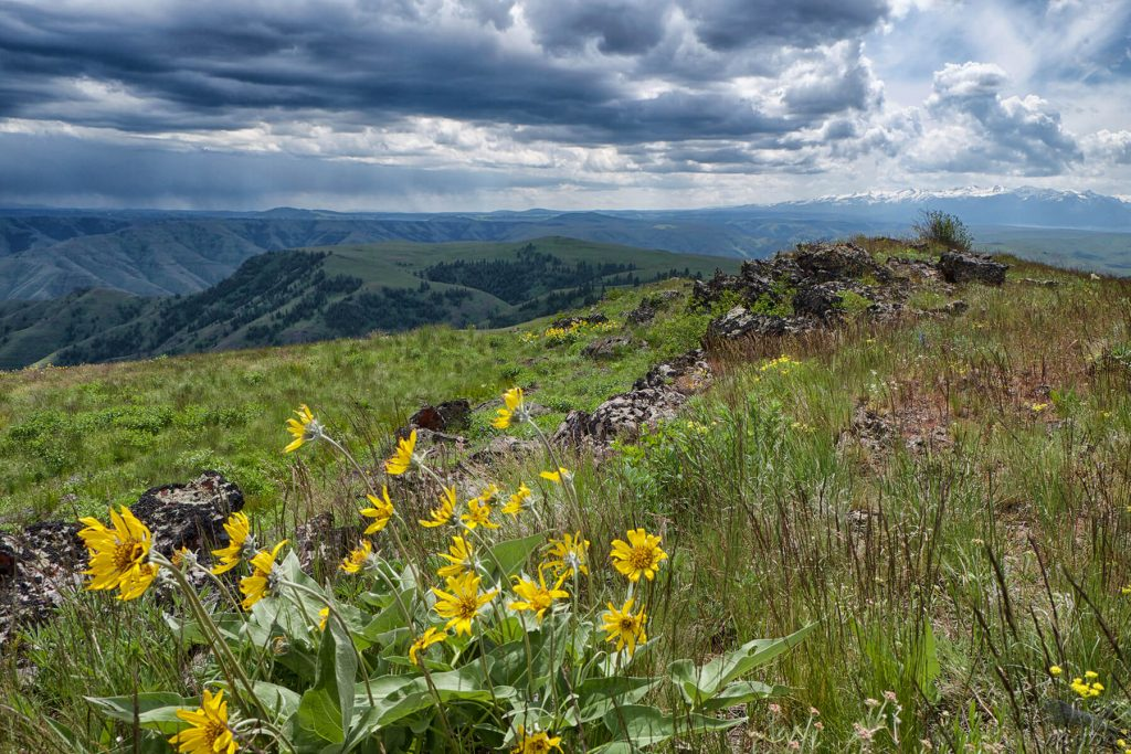 The Nature Conservancy. Zumwalt. Aaron Huey