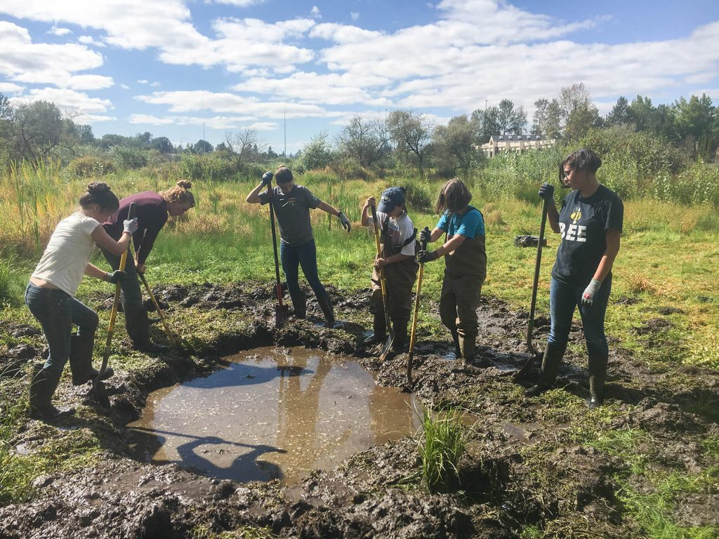 The Wetlands Conservancy. Volunteers by Megan Garvey