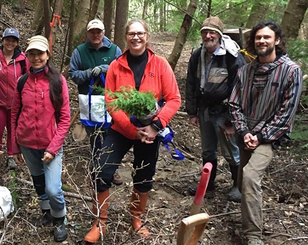 Wild Rivers Land Trust. Cedar Planting.