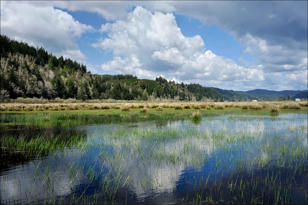 McKenzie River Trust. Waite Ranch Tim Giraudier - Beautiful Oregon