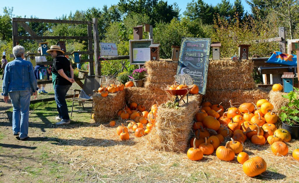 Lower Nehalem Community Trust. Pumpkin Gate