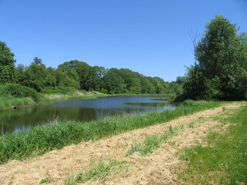 DU Conservation Easement near Amity photo by Ducks Unlimited