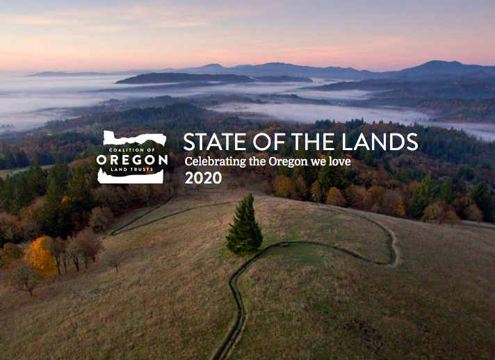 State of the Lands 2020 cover
