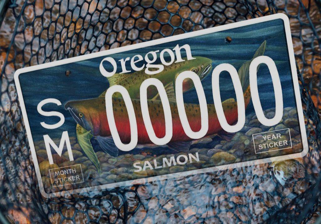 New Oregon salmon license plate.