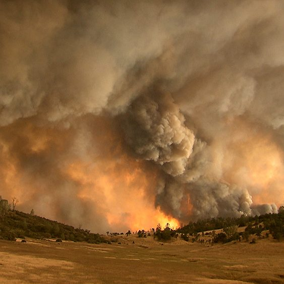 Image of a burning forest on a hillside with smoke billowing into the sky