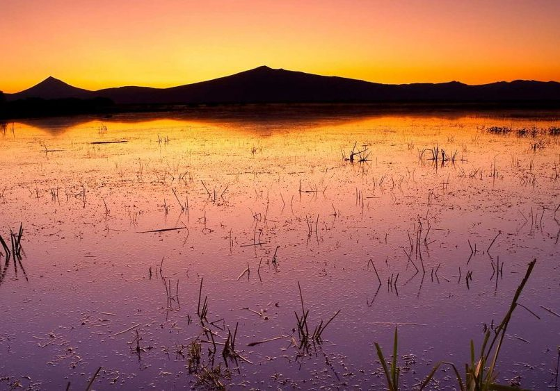 Willamson River Delta TNC by Rick McEwan