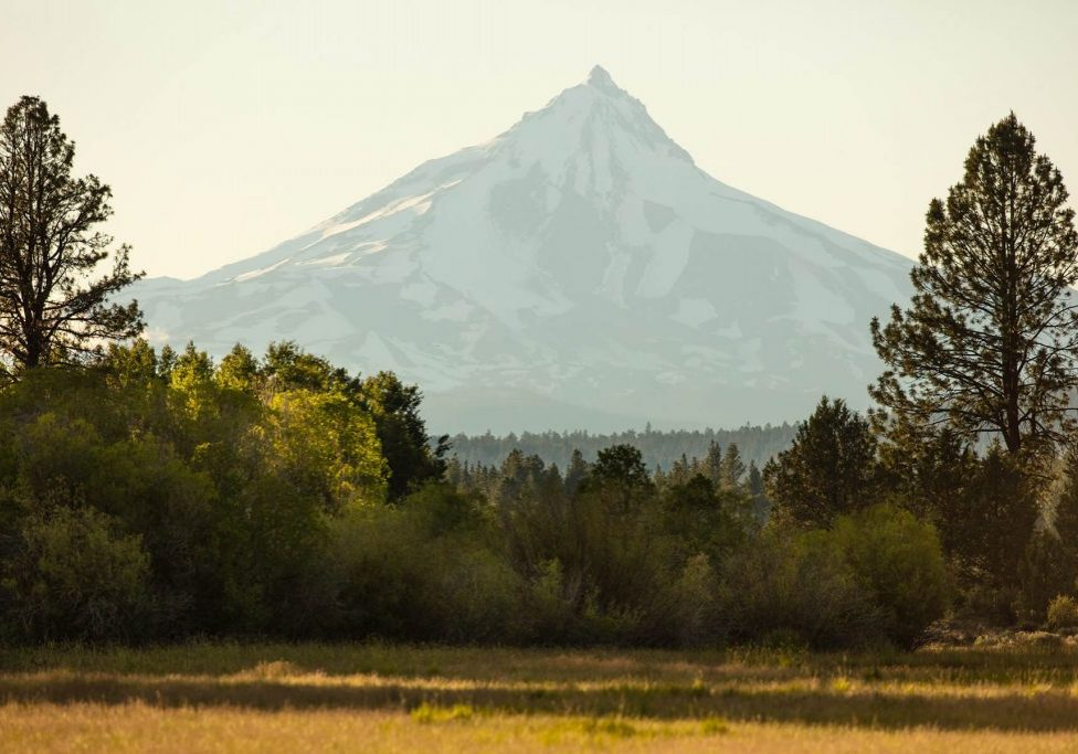 Scenic view of Mount Jefferson from Indian Ford Meadow Preserve by Tyler Roemer